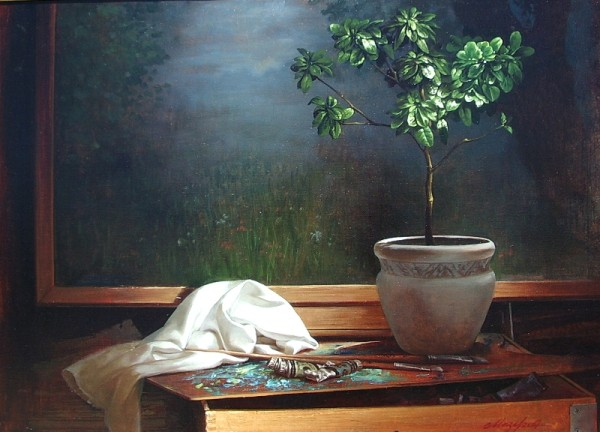 Still Life with window plant